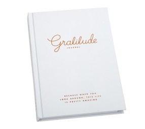 gratitude_journal_inspiration_2014_light_blue_hero
